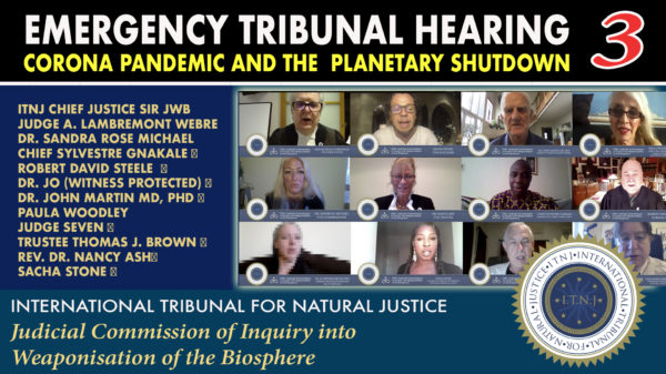 Emergency-Tribunal-Hearing-Corona-Pandemic-and-the-Planetary-Shutdown-2020-04-13-3rd-seating